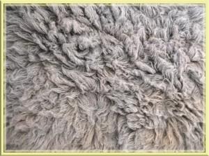Teppich, Laminat oder Parkett